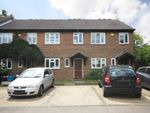 Thumbnail to rent in Rumsey Close, Hampton
