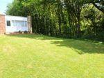 Thumbnail to rent in Gurnard Pines, Cockleton Lane, Gurnard, Cowes