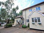 Thumbnail to rent in Cedar Court, Rye Street, Bishops Stortford