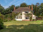 Thumbnail to rent in Bridge Road, High Kelling, Holt