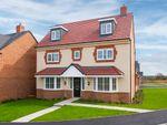 """Thumbnail to rent in """"Warwick"""" at Marsh Lane, Nantwich"""