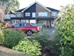 Thumbnail for sale in Sheepcotes Lane, Silver End, Witham