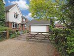 Thumbnail for sale in Wilson Close, Willesborough Lees, Ashford