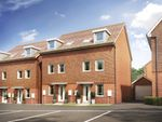 Thumbnail to rent in Peggs Way, Basingstoke