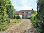 Thumbnail for sale in Ipswich Road, Colchester