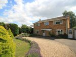 Thumbnail for sale in Great Barton, Bury St Edmunds, Suffolk