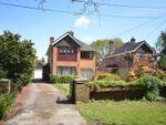Thumbnail to rent in Middle Common Road, Pennington, Lymington