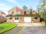 Thumbnail for sale in Greenfield Close, Liphook, Hampshire