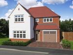 Thumbnail to rent in The Copse, Shutterton Lane, Dawlish, Devon