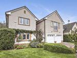 Thumbnail to rent in 41 Alderston Gardens, Haddington