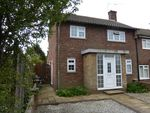 Thumbnail to rent in Lime Avenue, Colchester
