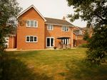 Thumbnail for sale in Arbroath Gardens, Orton Northgate, Peterborough