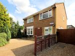 Thumbnail for sale in Priors Croft, Woking, Surrey
