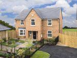 "Thumbnail to rent in ""Winstone"" at Brookfield, Hampsthwaite, Harrogate"