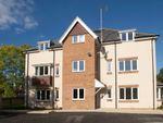 Thumbnail to rent in Elm Grove, Horsham