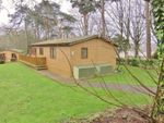 Thumbnail for sale in Plas Coch Holiday Park, Llanfairpwllgwyngyll
