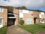 Thumbnail to rent in Sidford Close, Hemel Hempstead