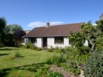 Thumbnail for sale in St Abbs Road, Coldingham