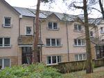 Thumbnail to rent in James Short Park, Falkirk