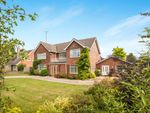Thumbnail to rent in Newmarket, Suffolk, United Kingdom