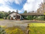 Thumbnail to rent in Wood Vale, Main Road, Fairlie, Largs