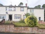 Thumbnail to rent in 8 Gean Road, Alloa