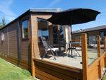 Thumbnail to rent in Ladram Bay, Otterton, Budleigh Salterton