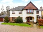 Thumbnail to rent in Hawley Grove, Blackwater, Camberley