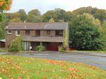 Thumbnail to rent in Hallcroft Green, Ratho, Newbridge