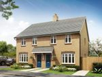 """Thumbnail to rent in """"Maidstone"""" at Southern Cross, Wixams, Bedford"""