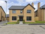 Thumbnail to rent in Strawberry Hill Lane, Ballynahinch Road, Lisburn
