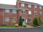 Thumbnail to rent in Forsythia Drive, Chorley