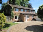 Thumbnail for sale in Hall Close, Bishops Waltham