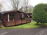 Thumbnail to rent in Crooklands, Milnthorpe