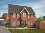 """Thumbnail to rent in """"Morpeth"""" at Windsor Avenue, Newton Abbot"""