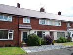 Thumbnail for sale in Tan Yr Hafod, Gwernaffield, Mold, Flintshire