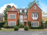 Thumbnail for sale in Wych Hill, Woking