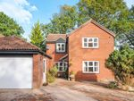 Thumbnail to rent in Buttermere, Great Notley, Braintree