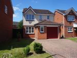 Thumbnail for sale in Orchid Crest, Pontefract
