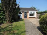 Thumbnail to rent in Japonica Close, Woking