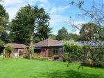 Thumbnail for sale in Pinetops, Knappe Cross, Brixington Lane, Exmouth, Devon