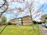 Thumbnail to rent in Sycamore Court, Bournville / Kings Norton, Birmingham