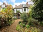 Thumbnail for sale in St. Mildreds Road, London