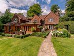 Thumbnail for sale in Hudnall Common, Little Gaddesden, Berkhamsted, Hertfordshire