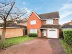 Thumbnail to rent in Tufted Close, Great Notley, Braintree