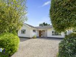 Thumbnail for sale in East Knighton, Dorchester