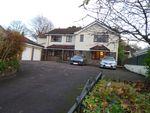 Thumbnail to rent in Church Road, Bridgend