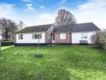 Thumbnail to rent in Kingswood Road Kington, Herefordshire