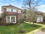 Thumbnail for sale in Holly Spring Lane, Warfield, Berkshire