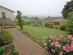 Thumbnail for sale in Furzehatt Rise, Plymstock, Plymouht, Devon